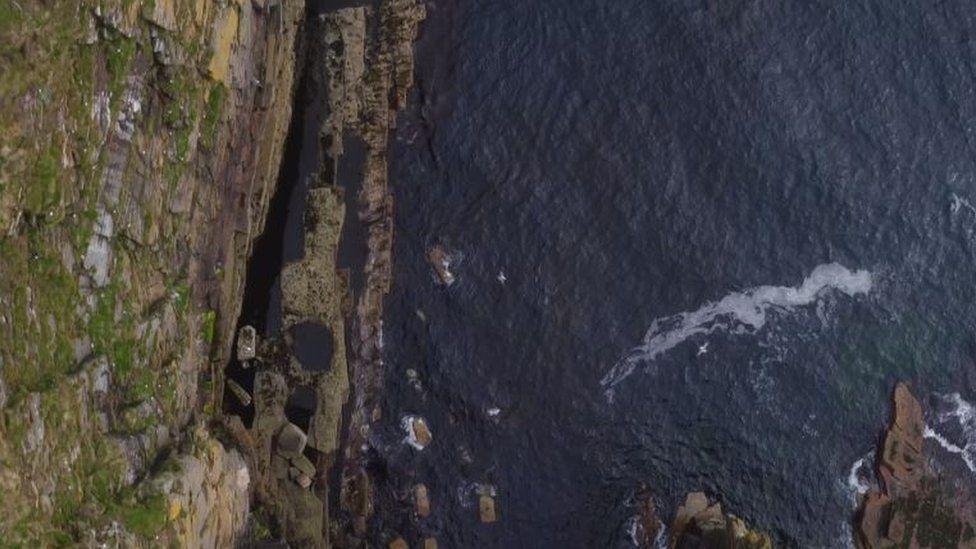 Drone footage of fulmars in Orkney