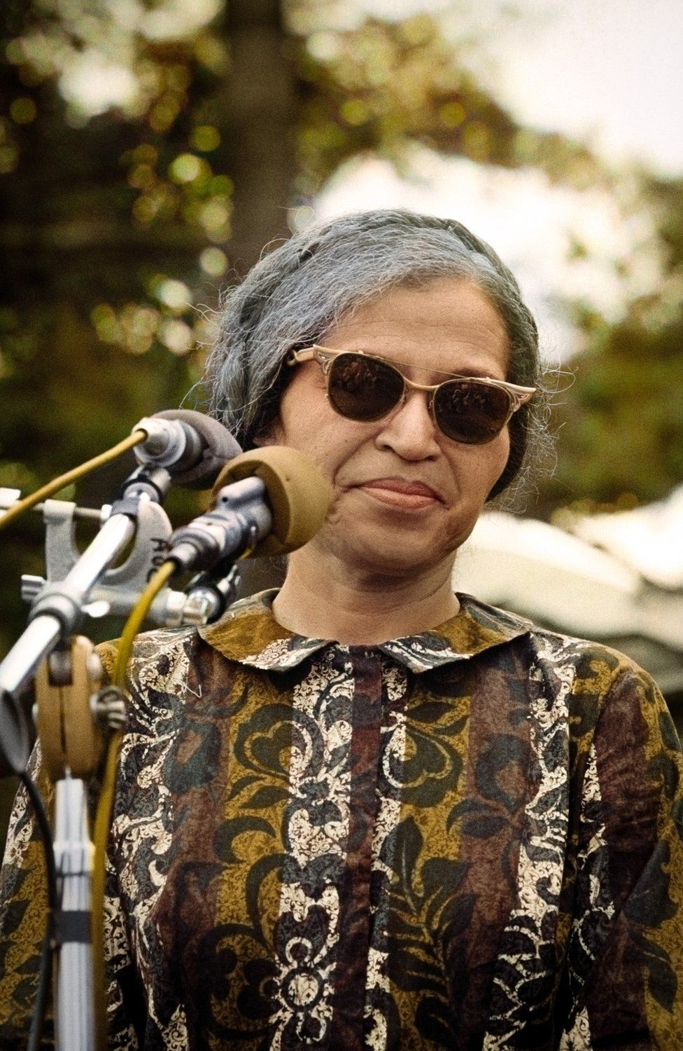 Rosa Parks stands in front of a microphone