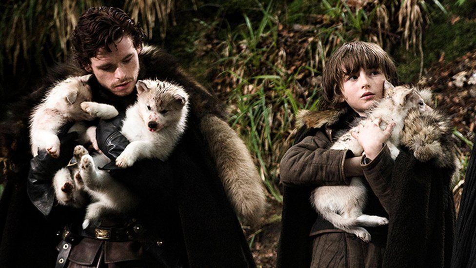 Robb Stark and Bran Stark with their new direwolf pups
