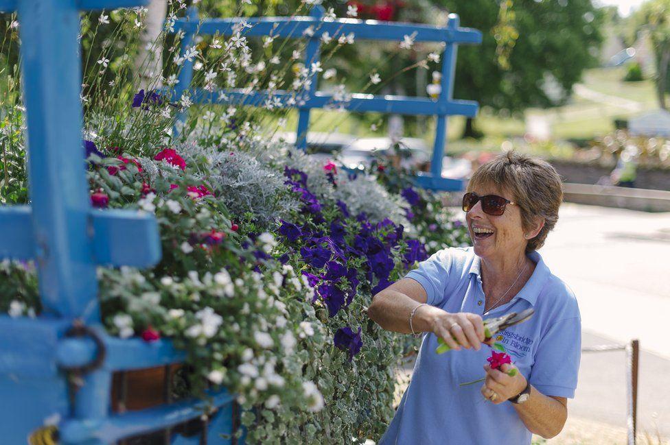 Kingsbridge volunteer deadheading a floral display