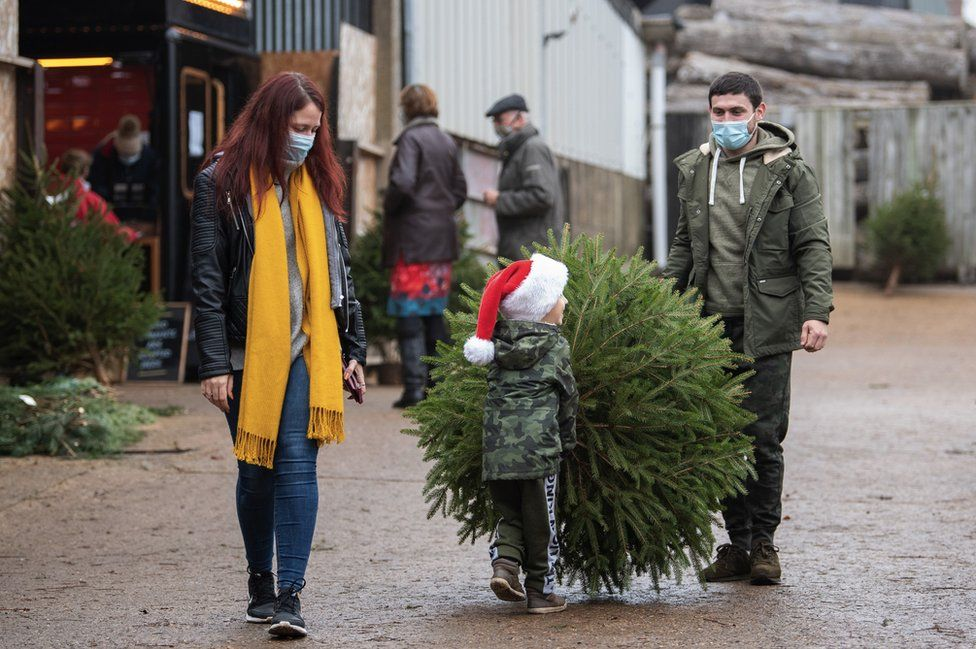 A family collecting a Christmas tree in Rutland