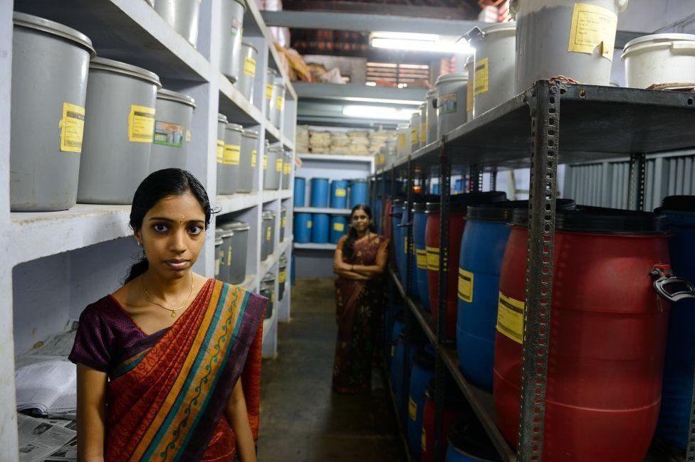 Women in a retreat that prepares massage oils in Kerala