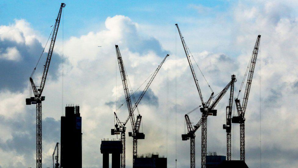 Cranes in silhouette