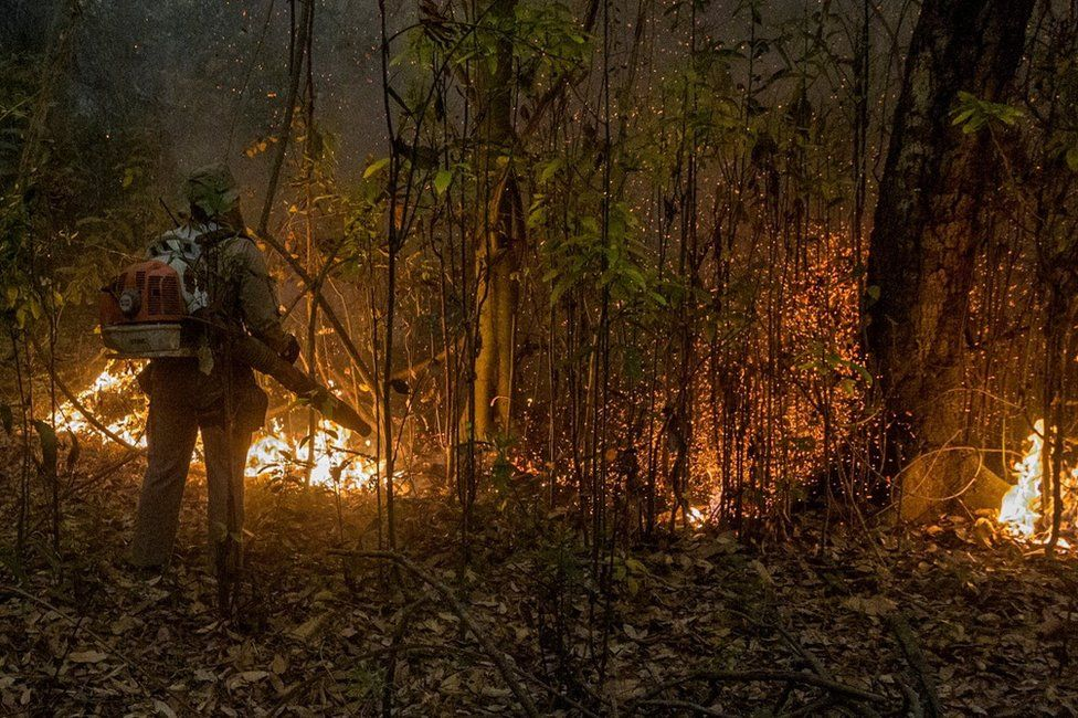 A firefighter tries to put out a forest fire in the Brazilian jungle
