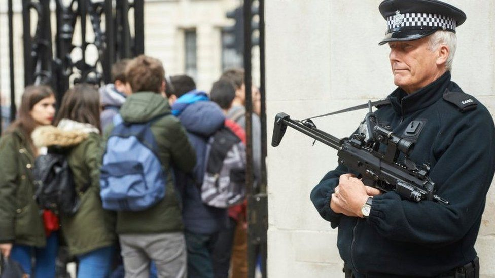 A Met Police firearms officer in Westminster