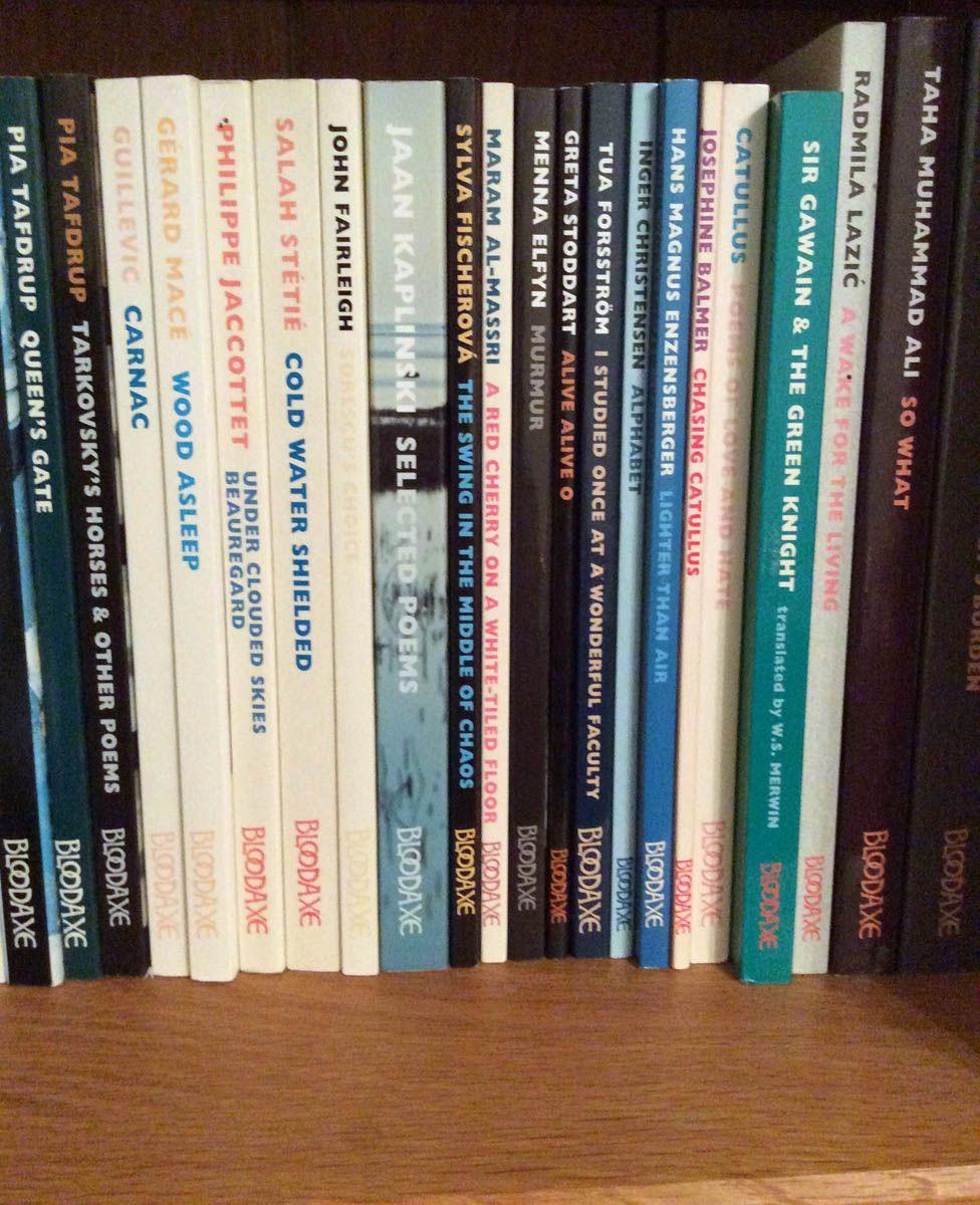Ian's bookshelf, empty at the front