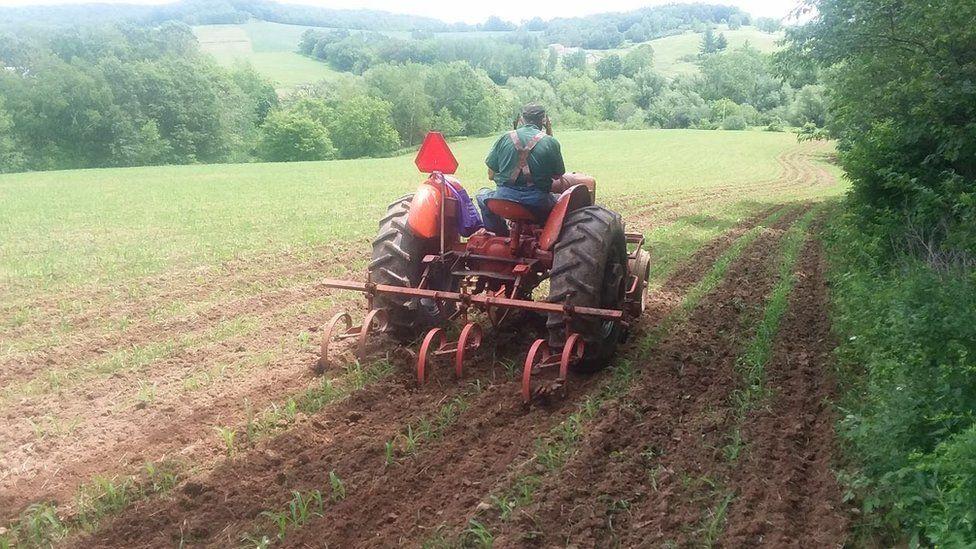 Wisconsin farmer Joel Greeno