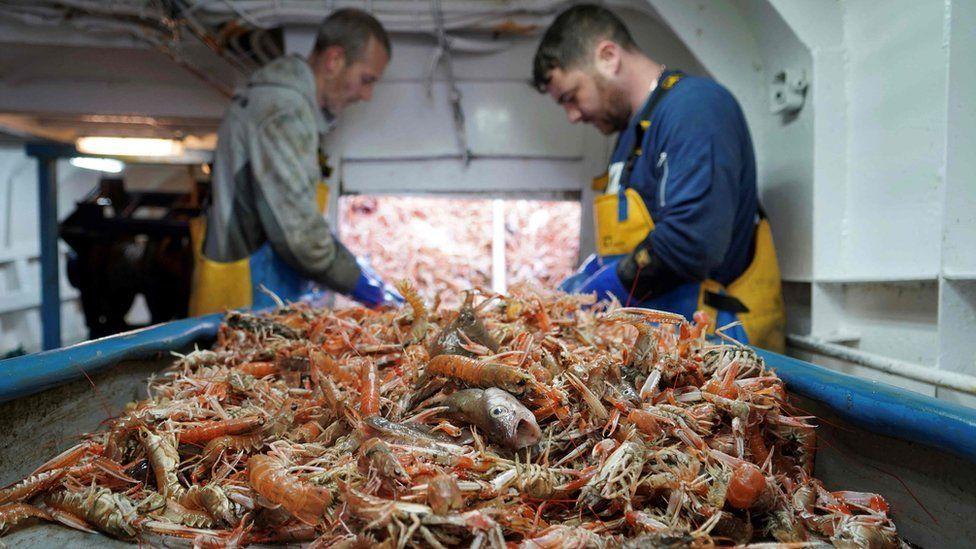 seafood fishermen