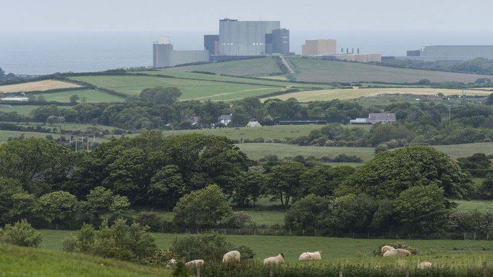 Wylfa Newydd in the distance - with fields full of sheep in the foreground