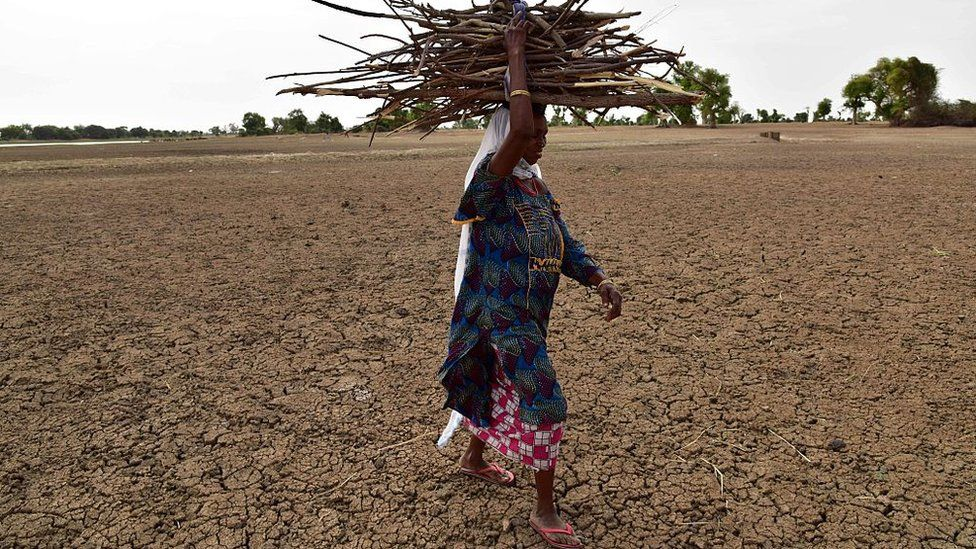A woman and her son carry fire wood on their heads on the dried banks of the Yobe River, known locally as the Komadougou, near Diffa in South-East Niger on June 20, 2016.
