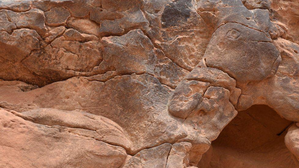 A camel face carved into rocks in Saudi Arabia