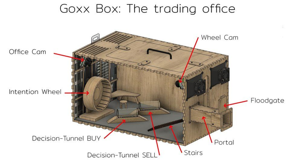 A labelled breakdown of the Goxx Capital offices