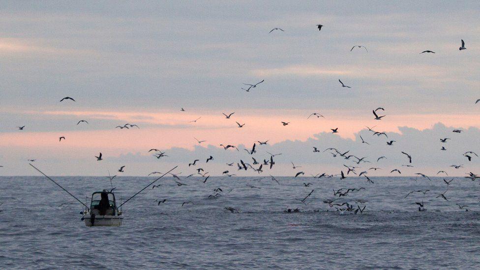 A fishing boat in UK waters