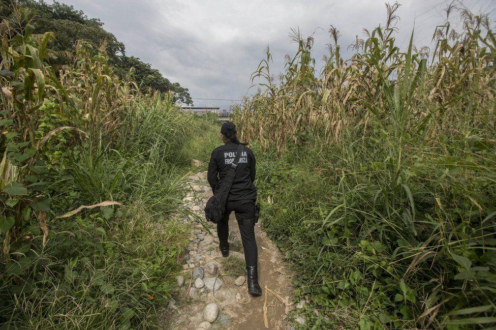 The policewoman walks through some fields