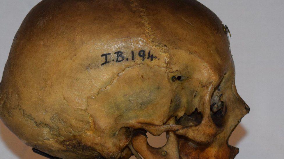 Druid skull