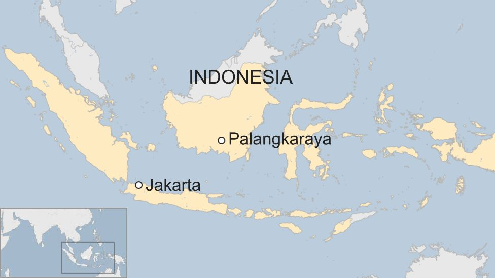 Indonesia S Planning Minister Announces Capital City Move Bbc News