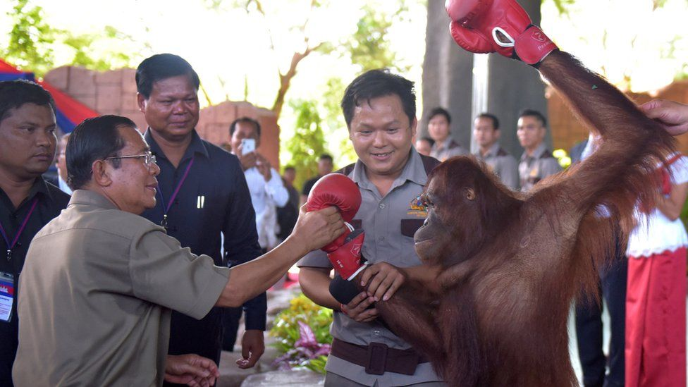 Cambodian Prime Minister Hun Sen holds an orangutan after a kick boxing performance during the inauguration of Phnom Penh Safari on June 23, 2018