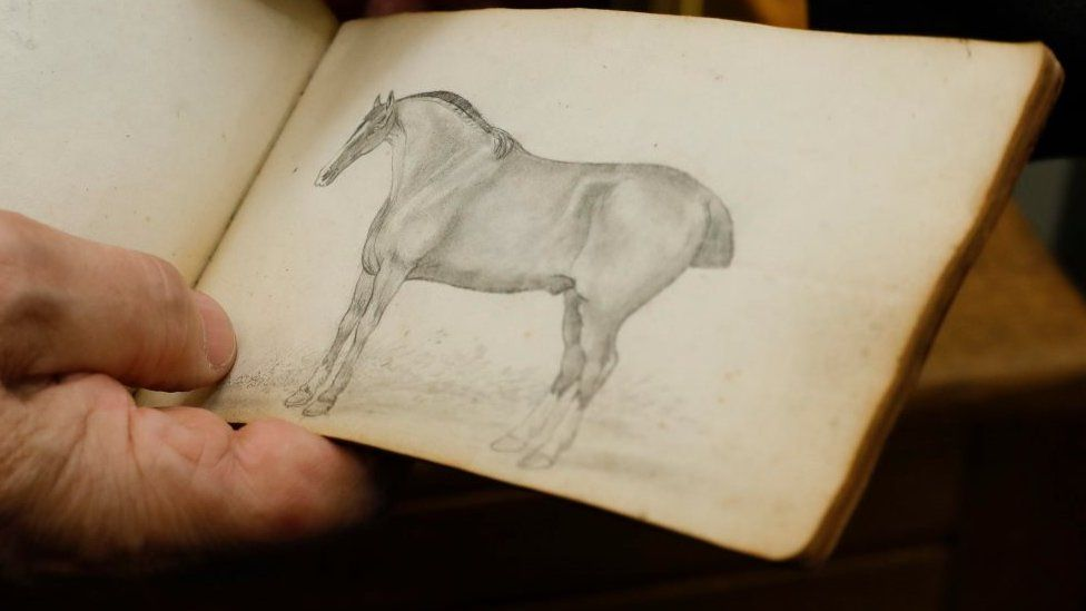 Sketch of horse in book