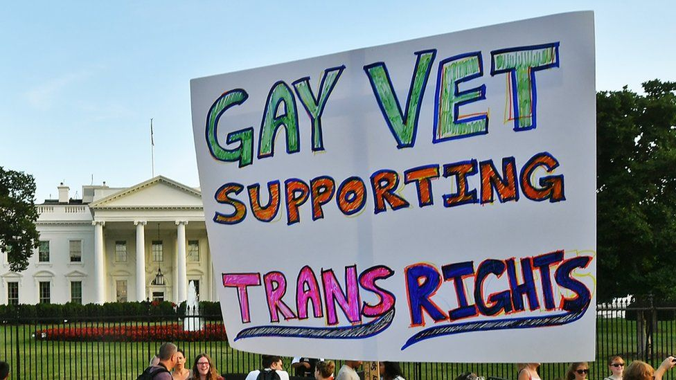 """A protest sign which reads """"Gay vet supporting Trans rights"""" held up outside the White House"""