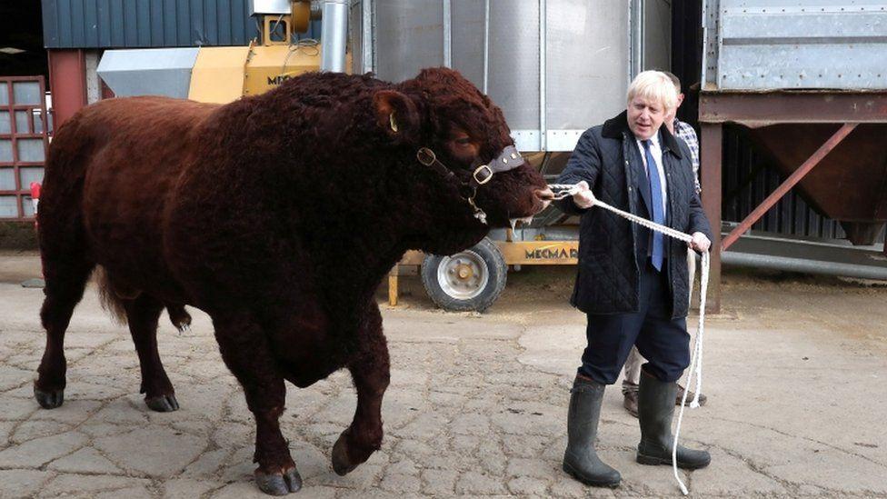 Boris Johnson with a bull