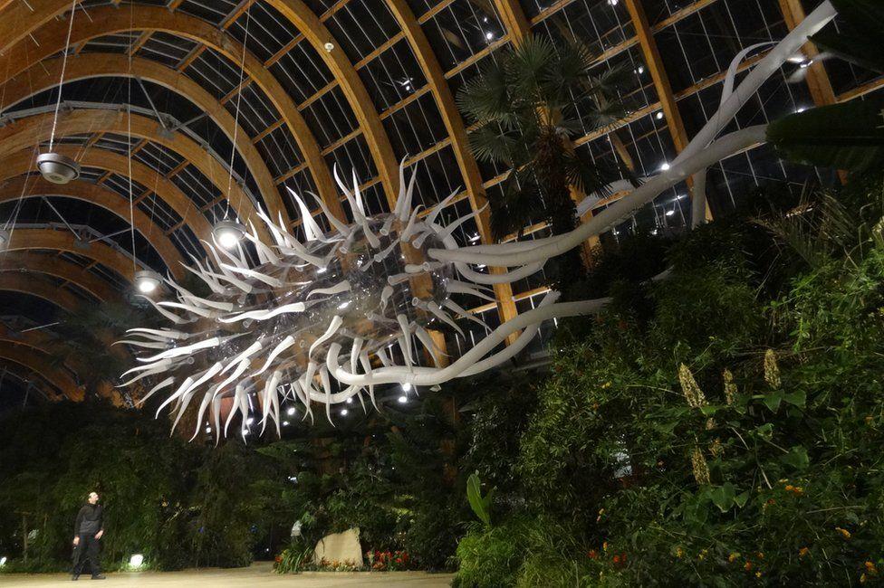 E.coli sculpture