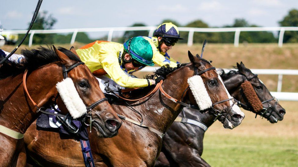 Chepstow Racecourse horses
