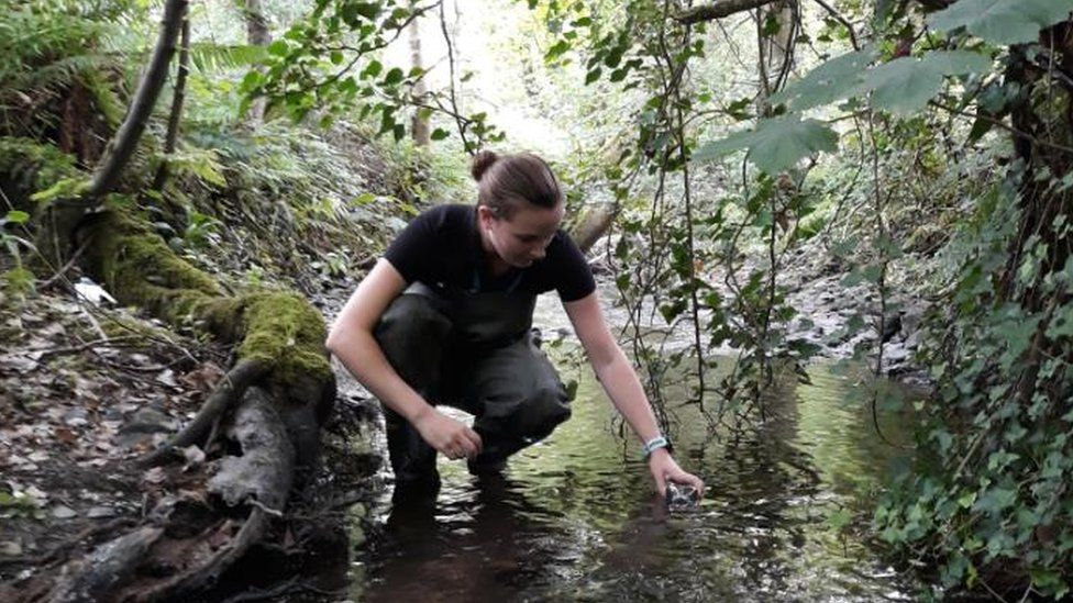 An environment protection officer takes a water sample