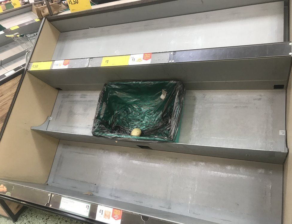 One potato on shelf