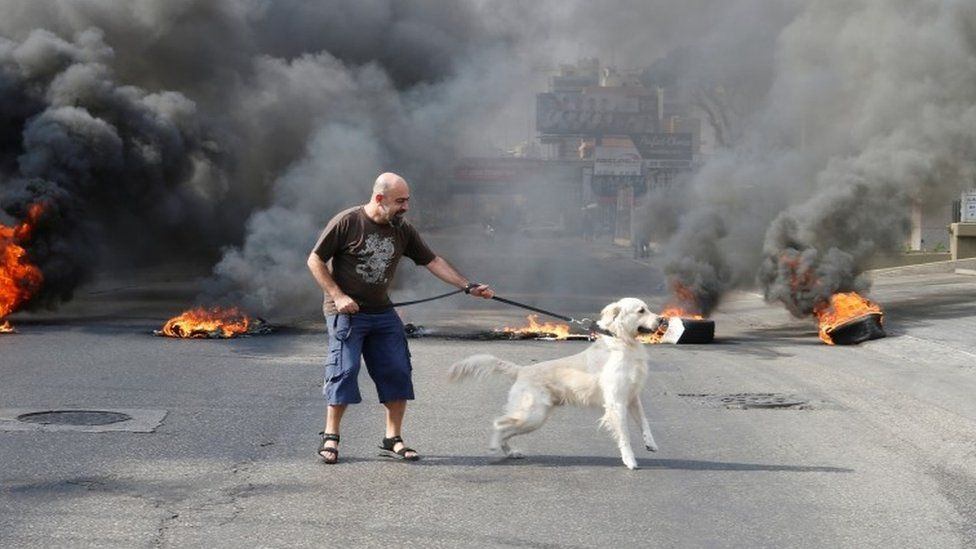 A protester and his dog stand in front of flames
