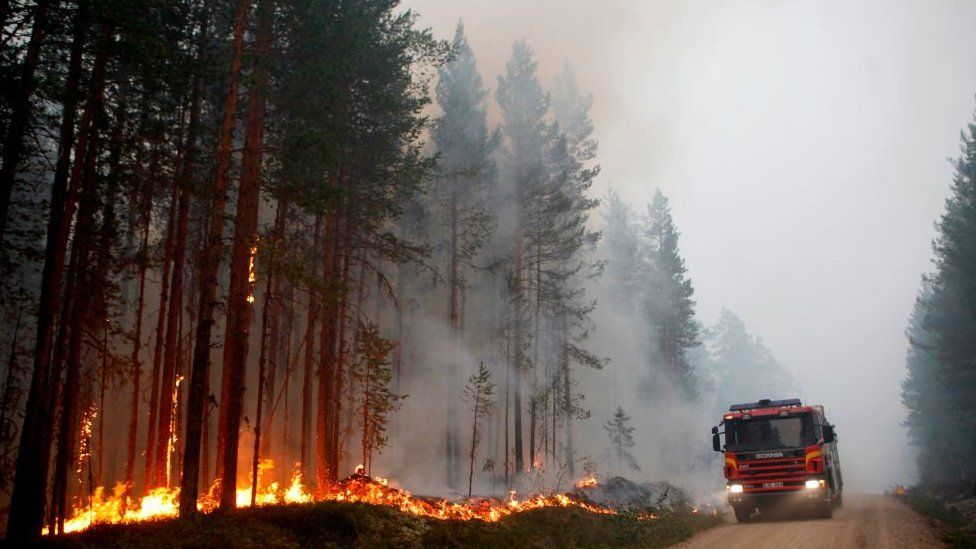 Wildfires have blazed across Sweden this summer, with hot weather and persistent drought cited as the main causes