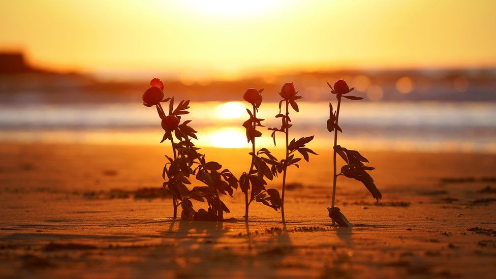 Flowers on the beach for the five who died