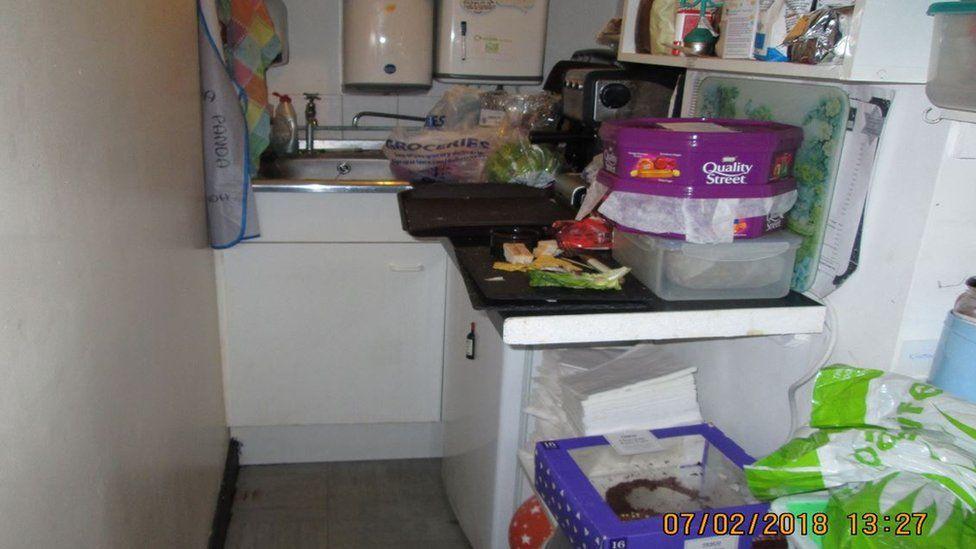 Catastrophe Cat Cafe's kitchen
