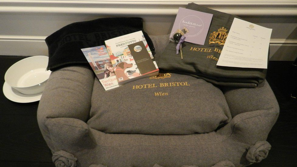 Dog cushion and welcome back at the Bristol Hotel in Vienna