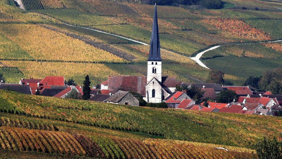 Champagne vineyards are pictured on October 25, 2019