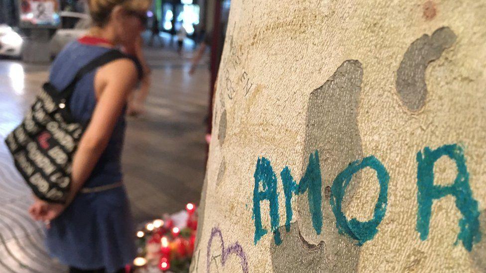 Tree on the Ramblas, Barcelona, 21 August