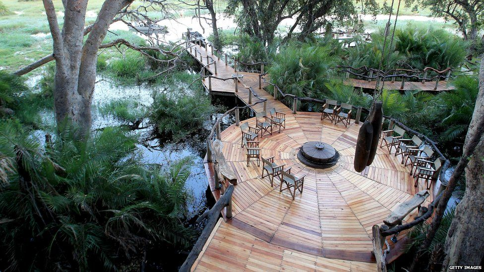 A wooden structure built into the swamp undergrowth as part of an upmarket tourist resort in Botswana