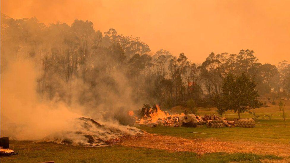 Mogo Zoo enclosure with bushfires