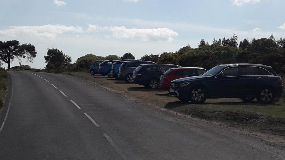 Cars parked on verges in the New Forest
