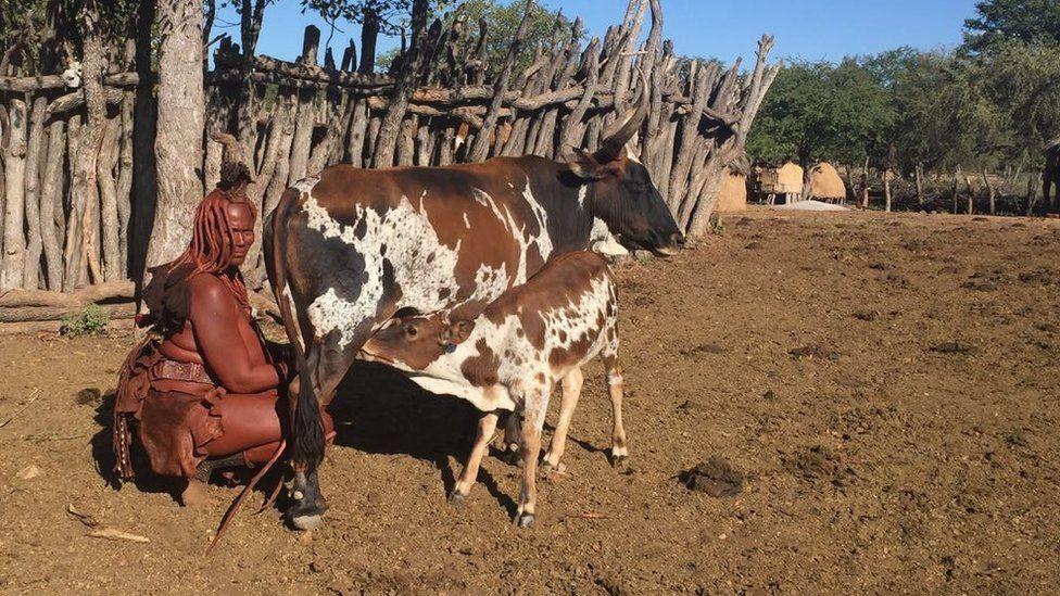 A woman in Omuhoro village in Kunene Region