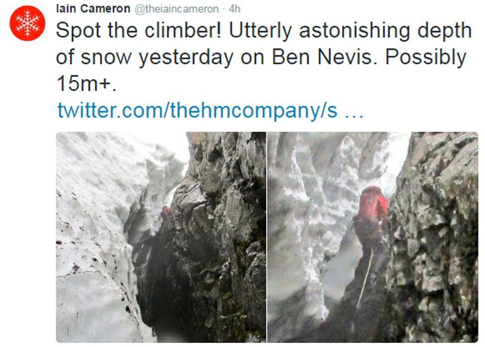Iain Cameron's tweet