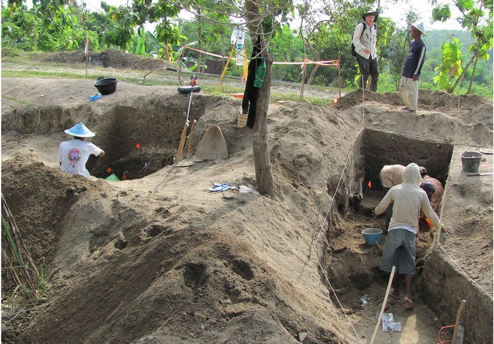 Excavations at Ngandong