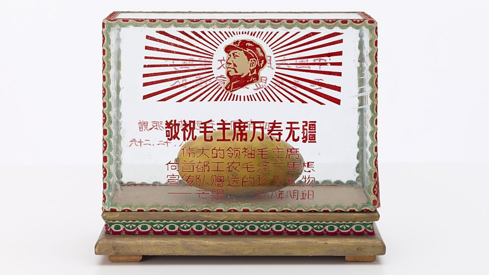 Glass case with Mango inside