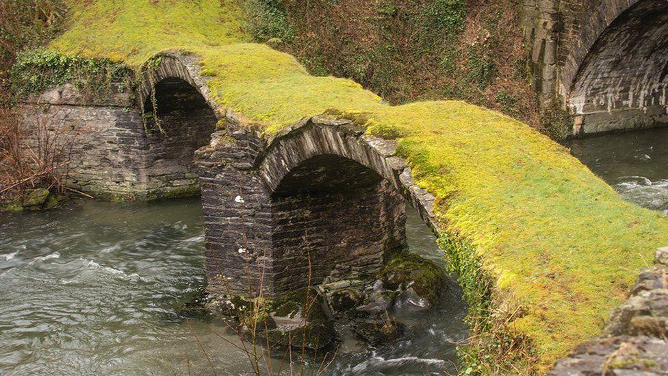 Pont Minllyn sy'n croesi afon Ddyfi ger Dinas Mawddwy