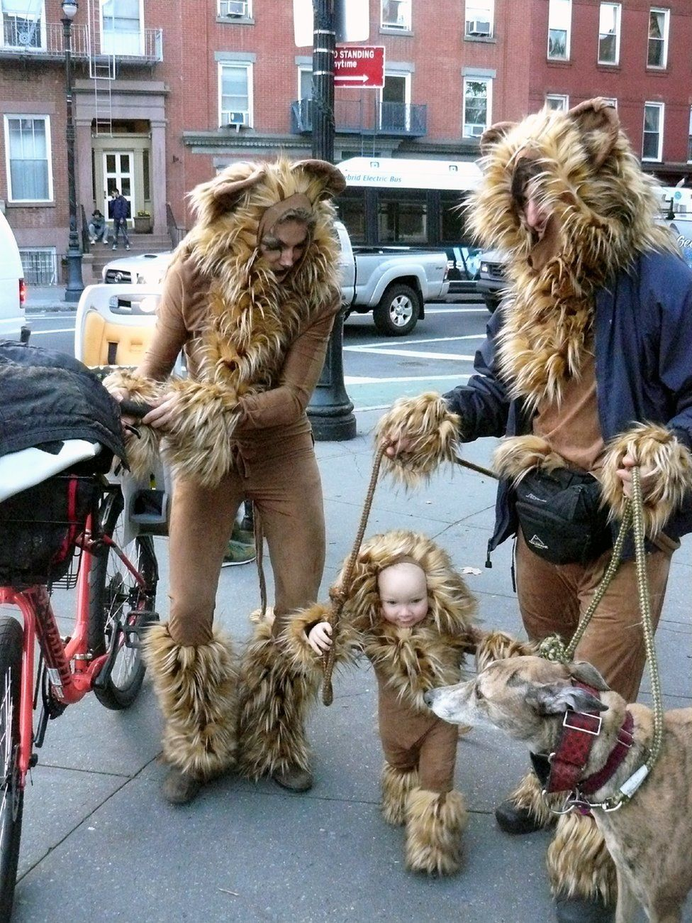 A family dressed as lions are seen in the street