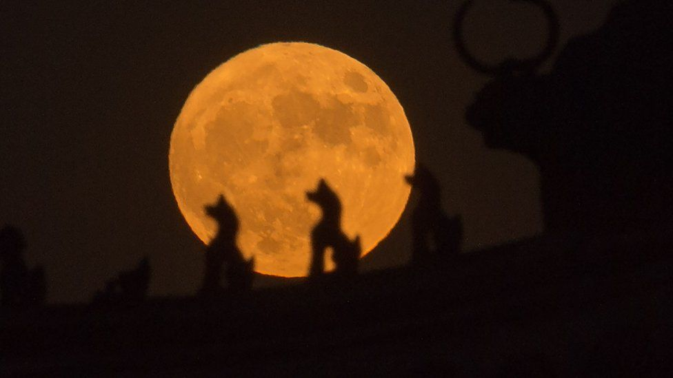 "A picture from 2016 showing the moon rising behind sculptures on the roof of a tower in the Forbidden City in Beijing, during the ""supermoon"" phenomena when the moon is near its closest approach to earth."