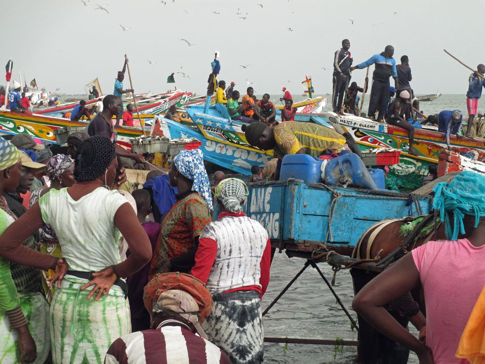 People and boats gather for the sardinella landing