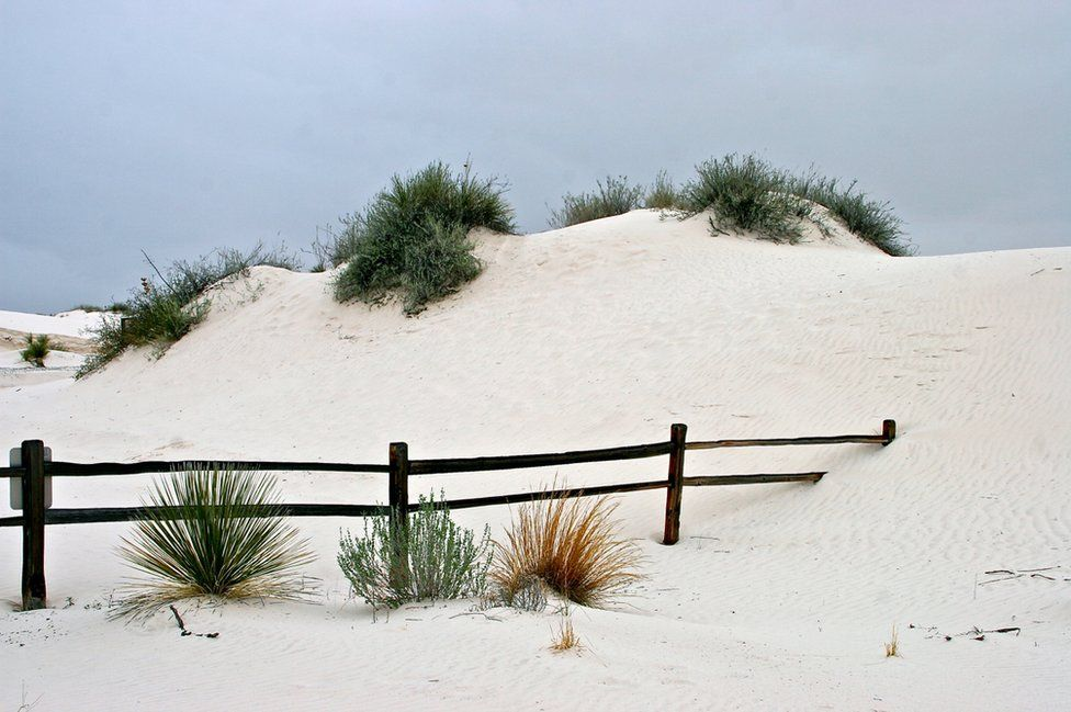 A fence coming into a sand dune