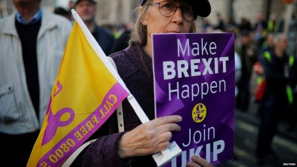 UKIP supporter during pro-Brexit march in London