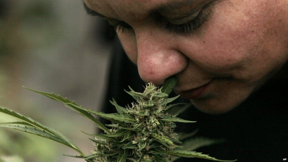 on July 7, 2015 Chile's lower house of Congress approved a bill to allow Chileans to grow small amounts of marijuana for recreational or spiritual use. The measure still must go before a health commission and be approved by the Senate.