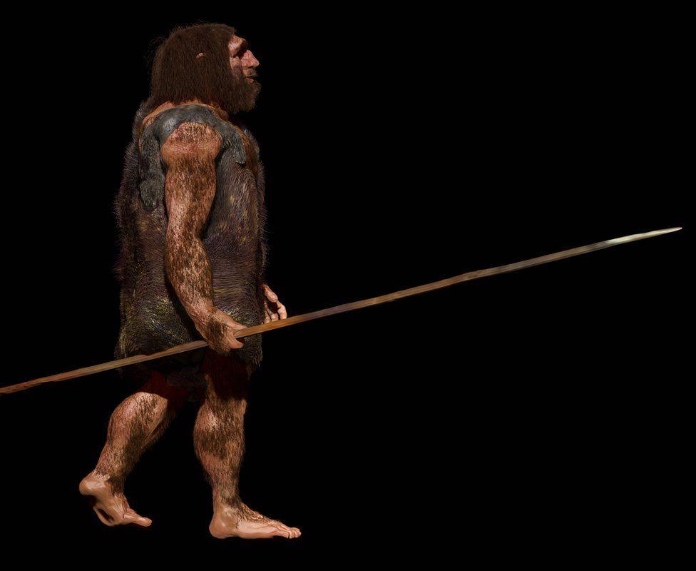 Neanderthal image